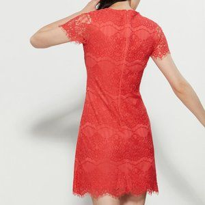 Kensie Dresses - KENSIE  Lace Mini Dress Coral 14
